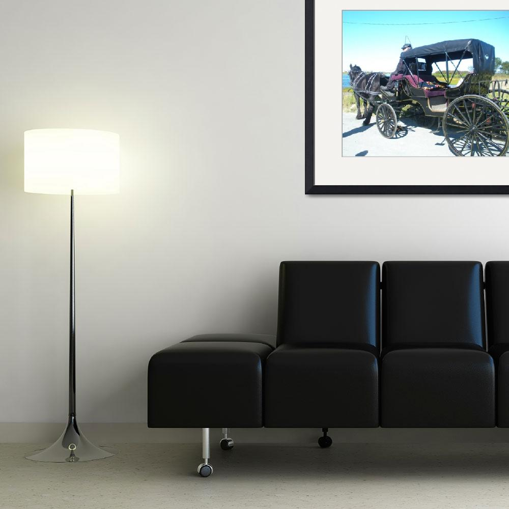 """""""Old Coach&quot  (2010) by thedebster"""