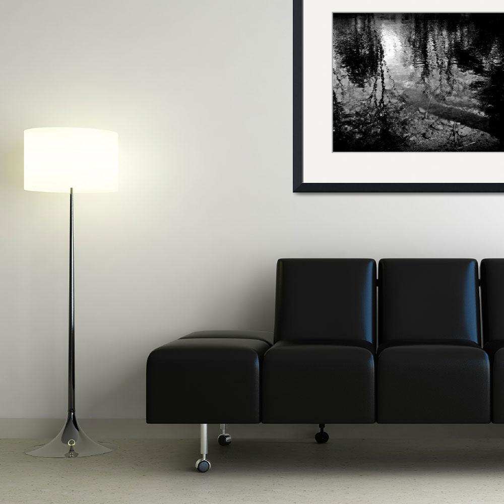 """""""Shadows Closing In&quot  (2012) by bavosiphotoart"""