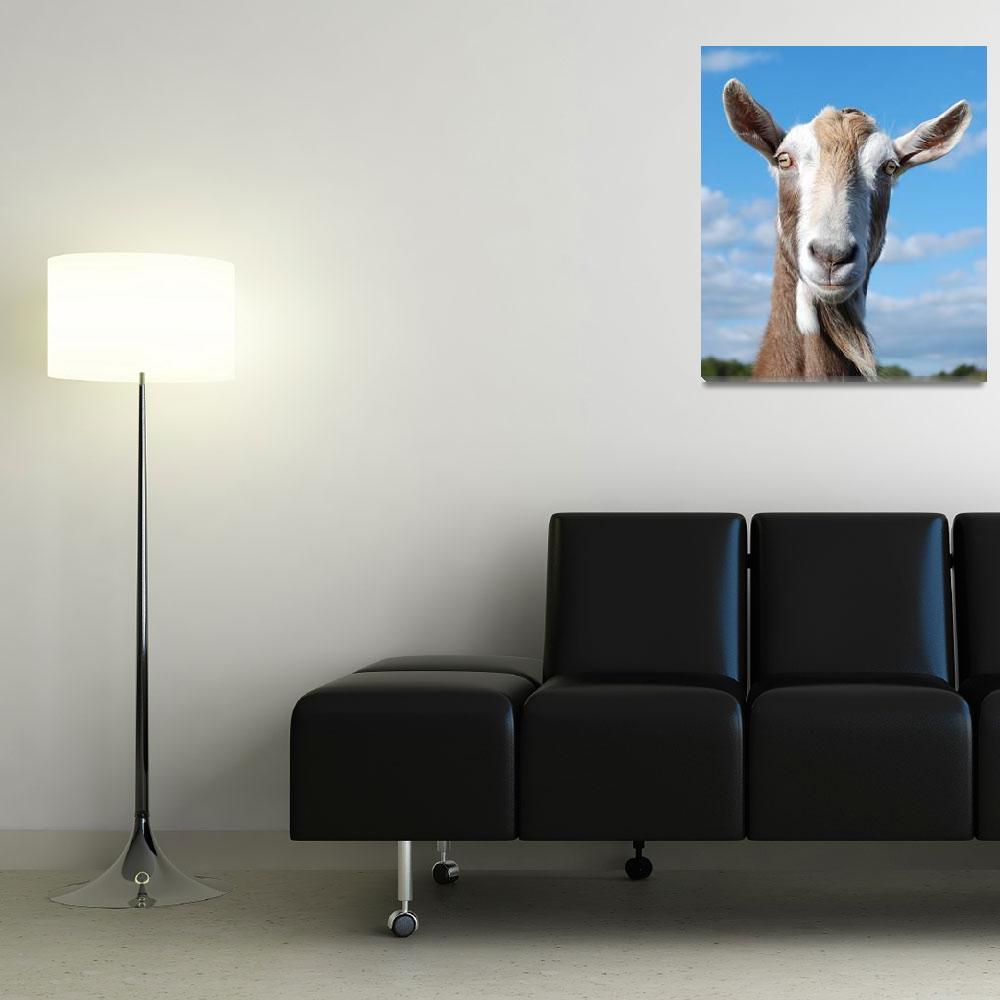 """Billy Goat"