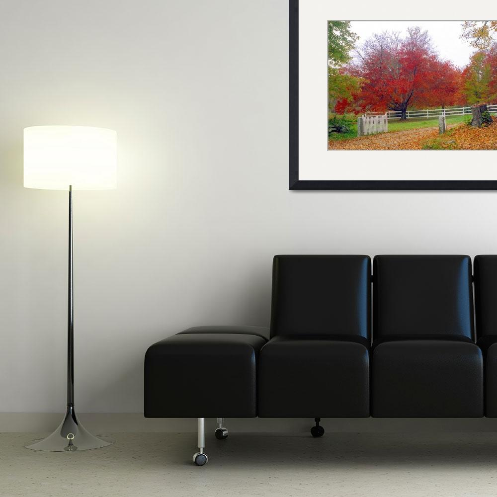"""""""Autumn in Connecticut&quot  (2011) by biriart"""