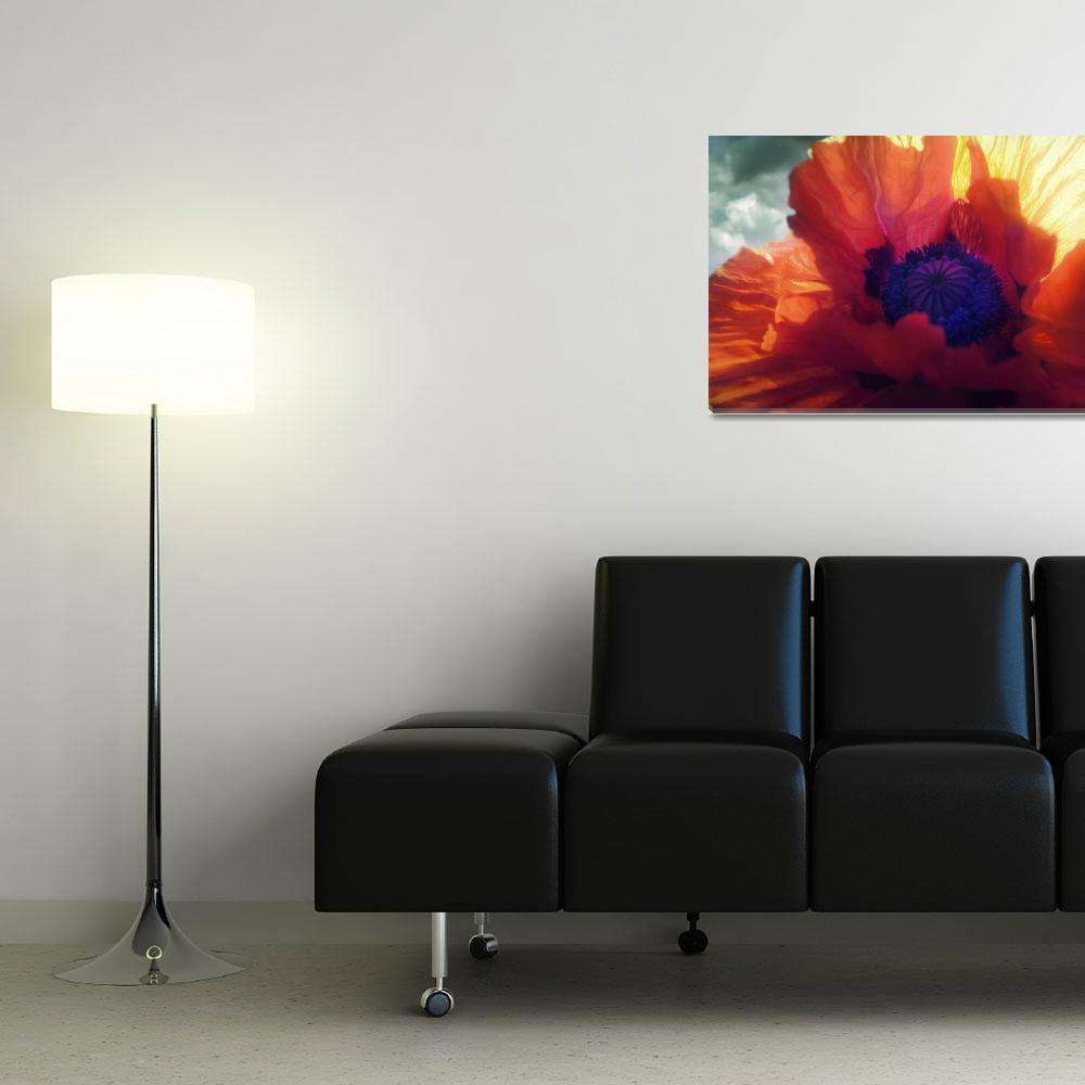 """Poppy Flames&quot  (2011) by pixelrev"