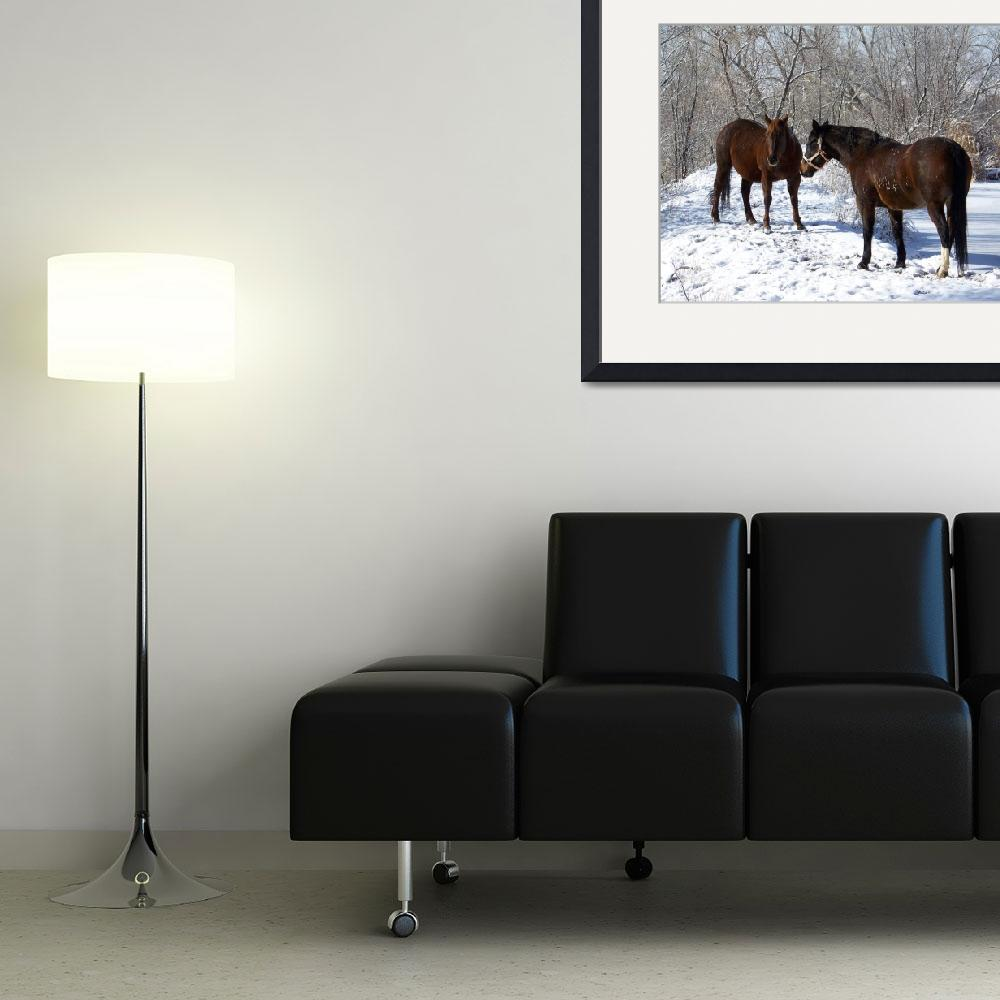 """Horses in the Snow&quot  (2009) by PettProjects"