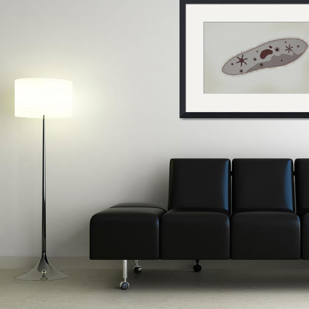 """""""Microscopic view of paramecium&quot  by stocktrekimages"""