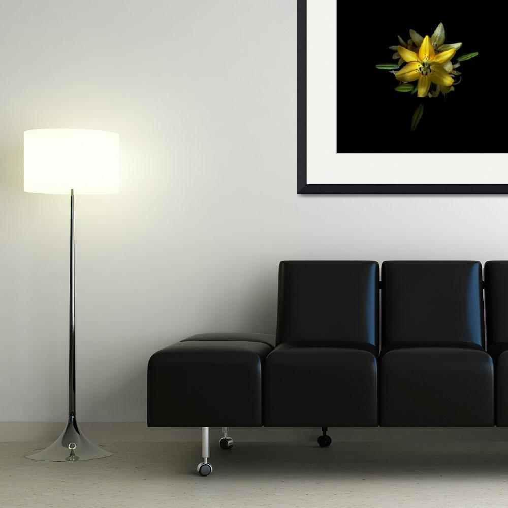 """""""yellow flower by school&quot  (2008) by TOMSHEA"""