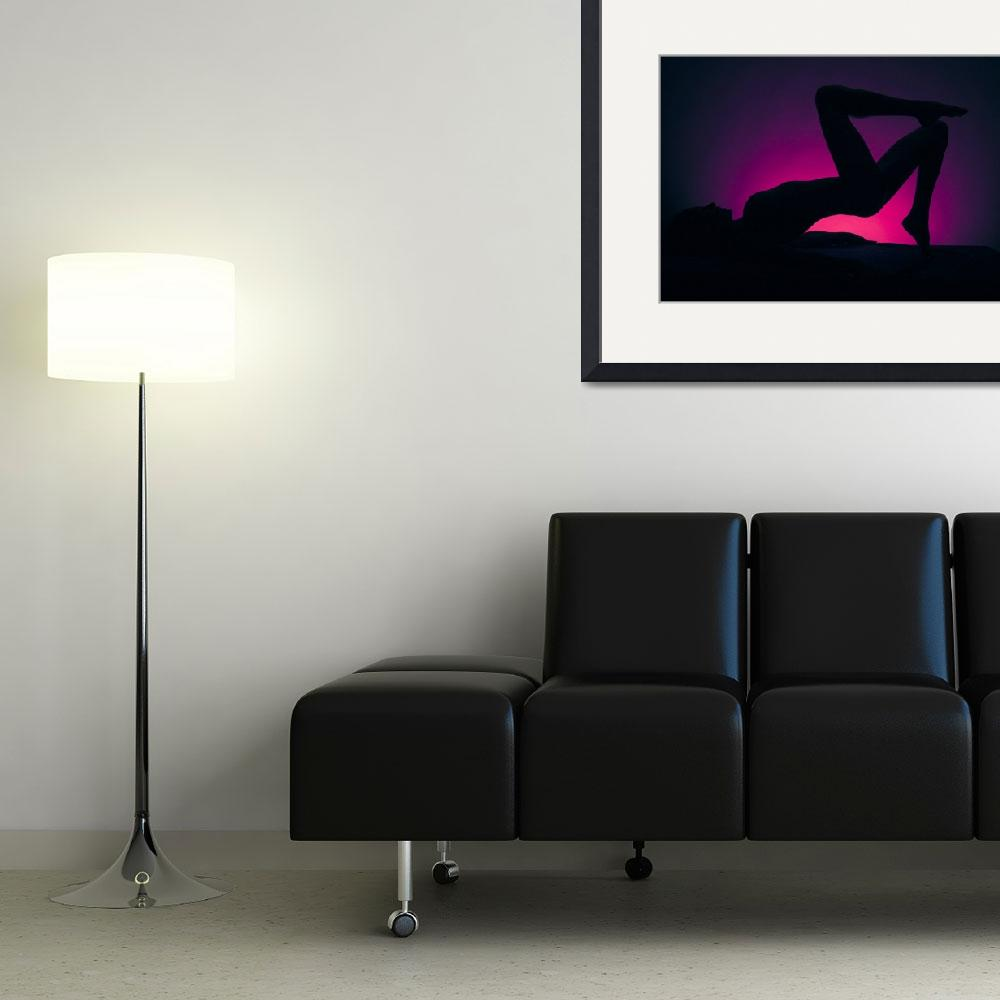 """""""Silhouette 2&quot  (2010) by DNA-ARTS"""