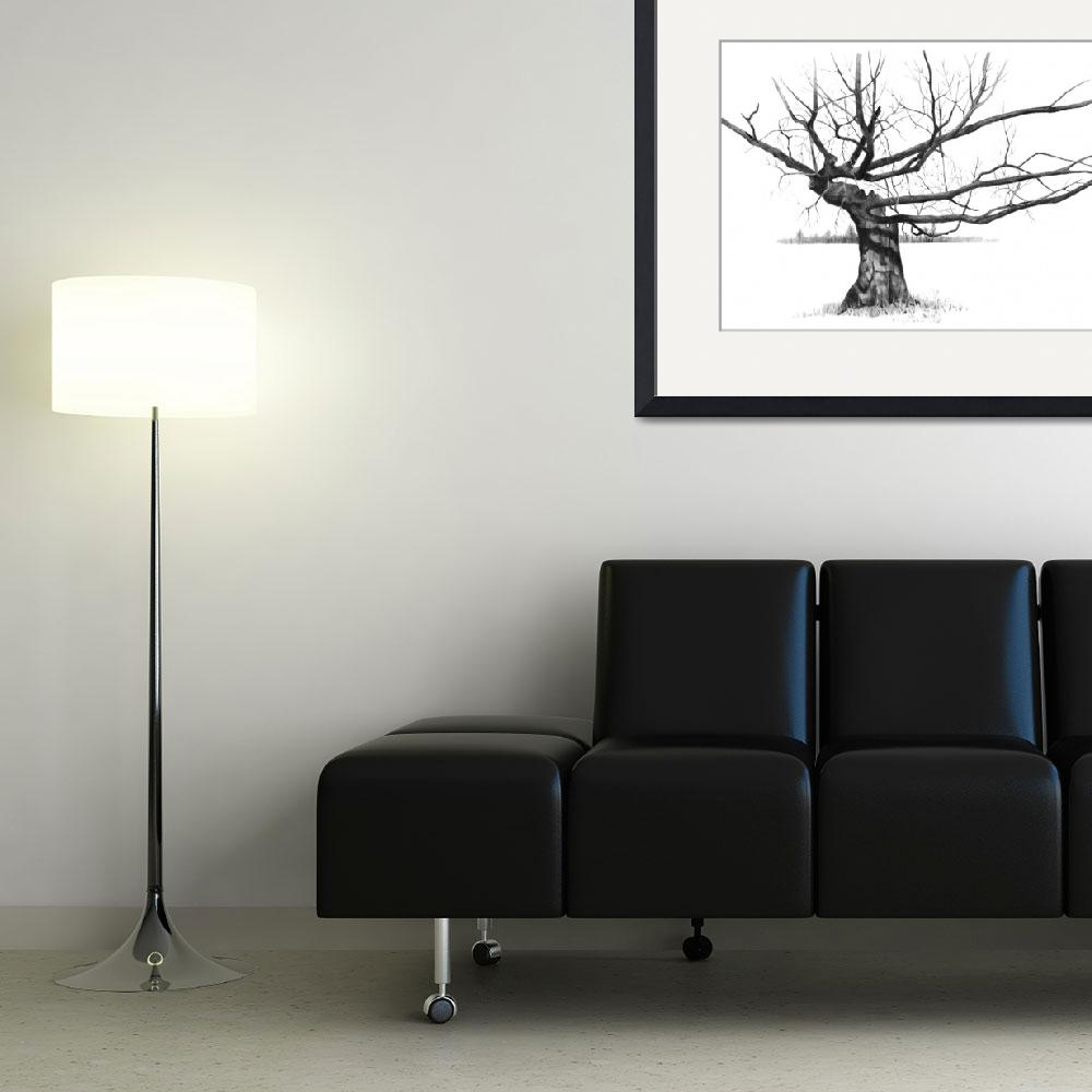 """""""Tree with Gnarled, Twisted Bare Branches, Pencil&quot  (2010) by joyart"""