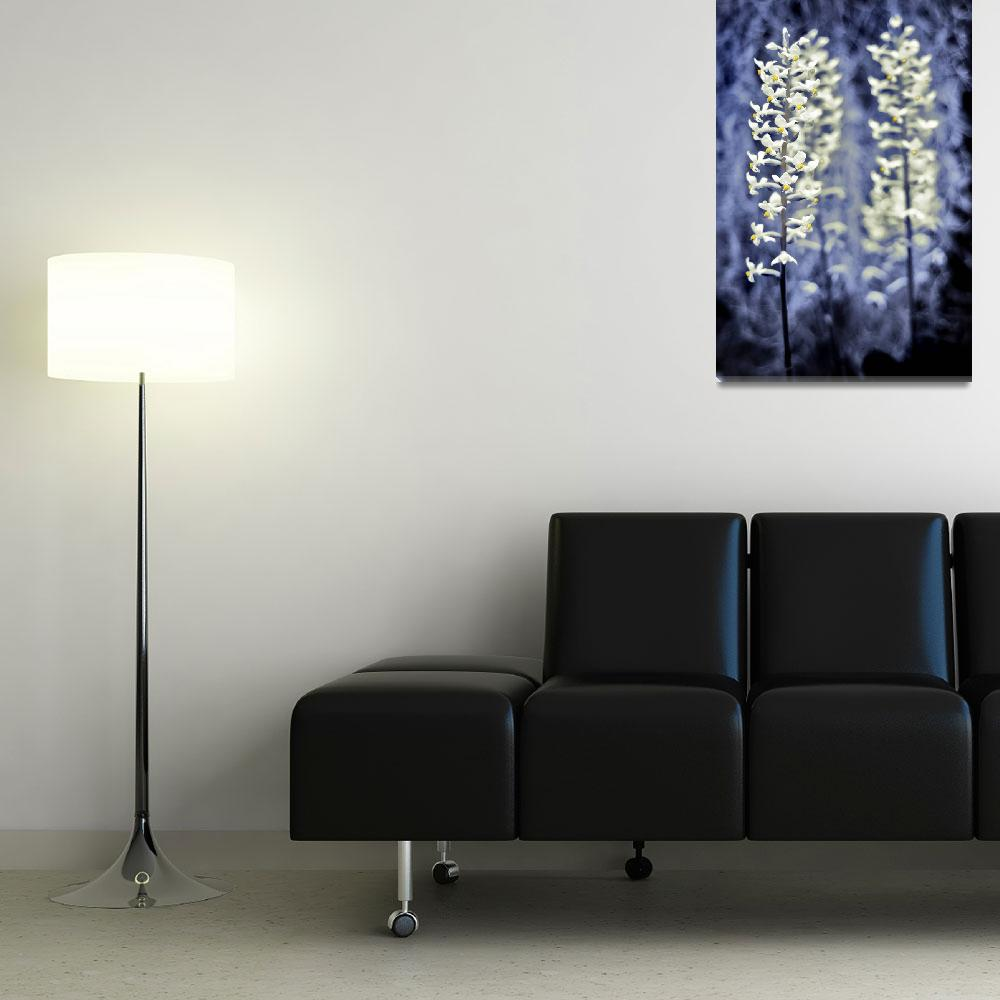 """""""3 flowers&quot  (2008) by e-gallery"""