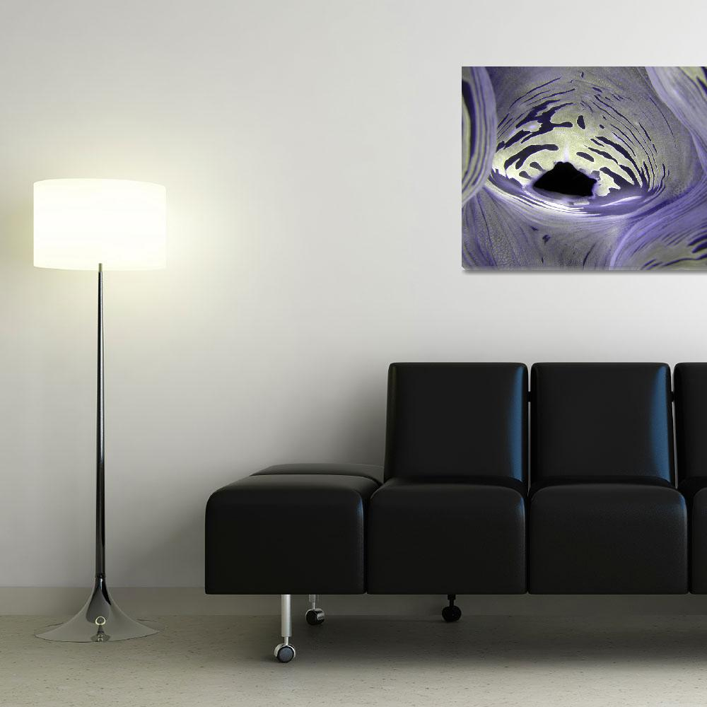 """""""Giant Clam&quot  (2008) by Frederique"""