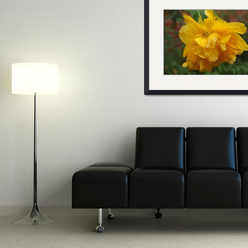 """""""Yellow puff&quot  (2012) by privera"""