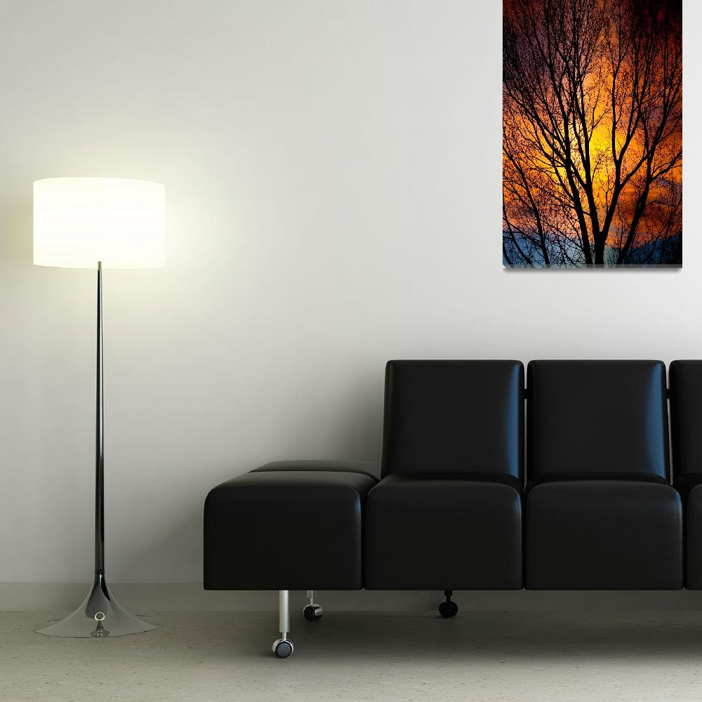 """""""Colorful Glowing Tree Silhouettes&quot  (2011) by lightningman"""