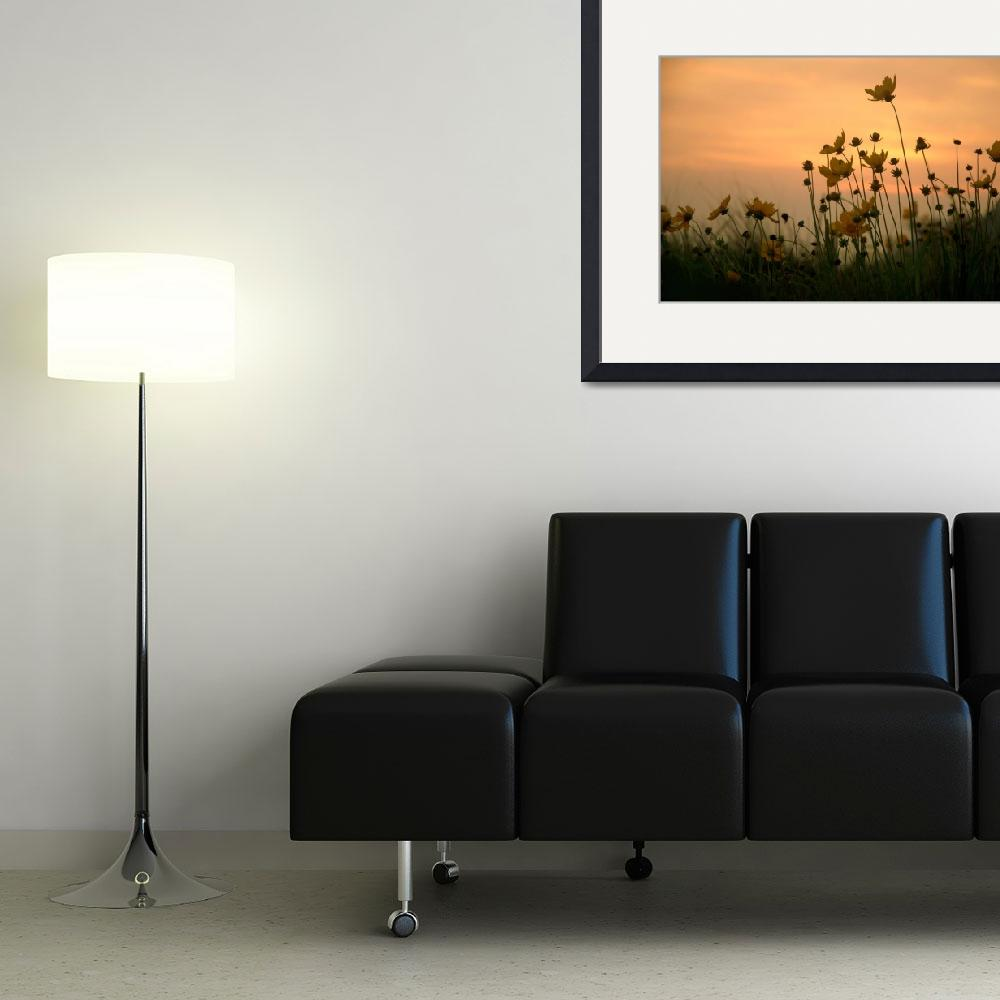 """""""Flowers on the hill..""""  (2011) by ChandaMathur"""
