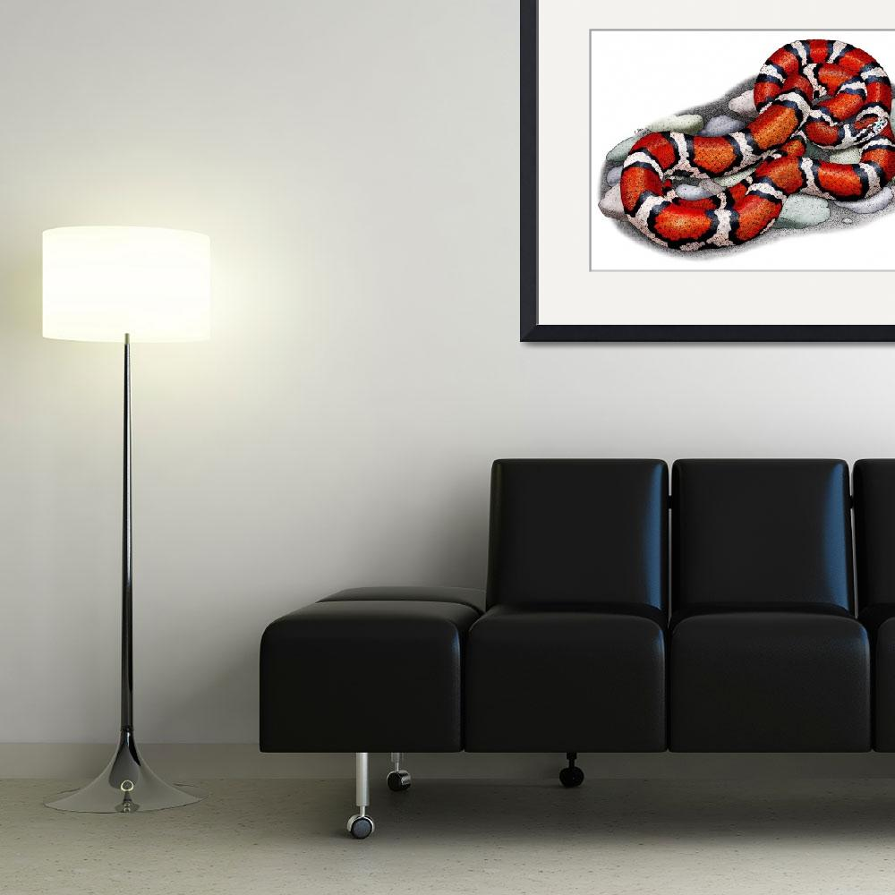 """""""Red Milk Snake&quot  (2009) by inkart"""
