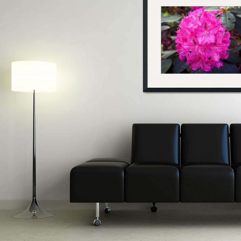 """""""Fusia Beauty&quot  (2011) by gnossisart"""