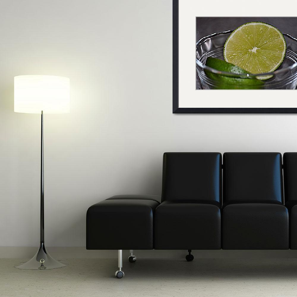 """""""The Perfect Lime&quot  (2013) by artographic66"""