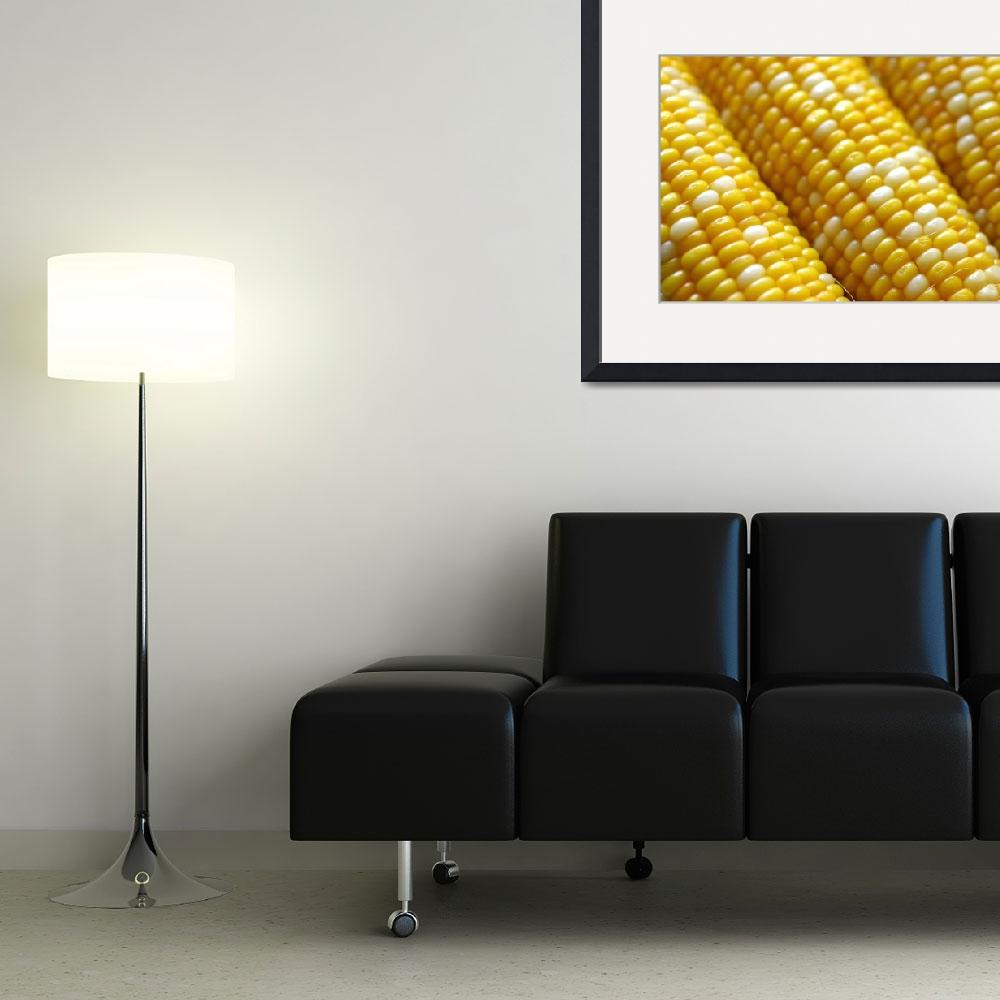 """""""Corn On The Cob""""  by gallery"""