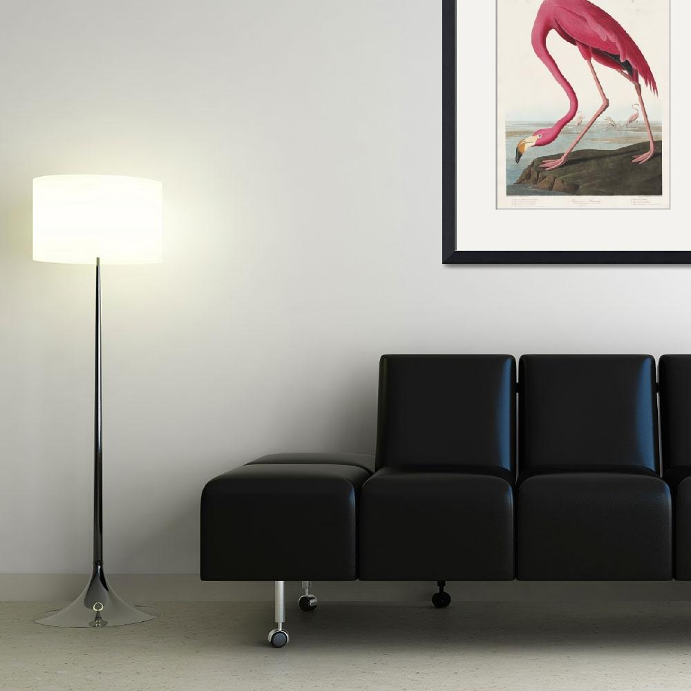 """""""Pink Flamingo from Birds of America&quot  by FineArtClassics"""