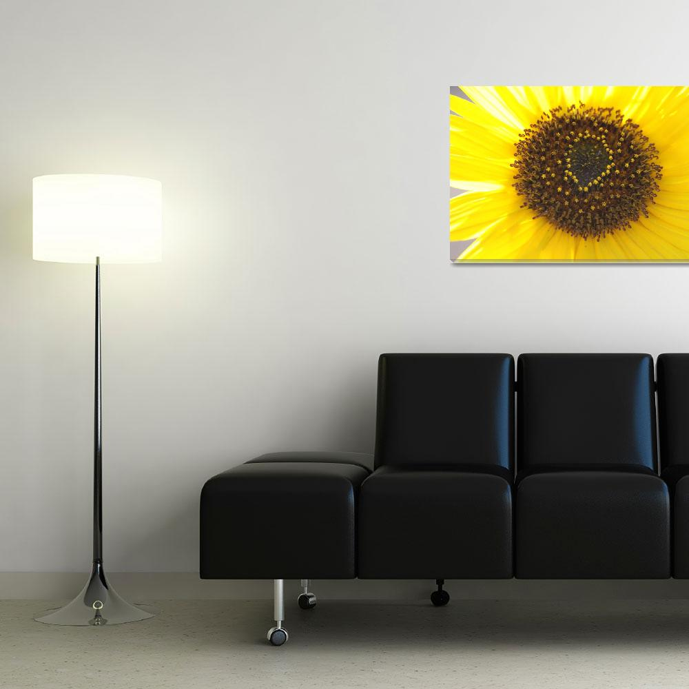 """""""City of Sunshine&quot  (2010) by CarrieAnderson"""