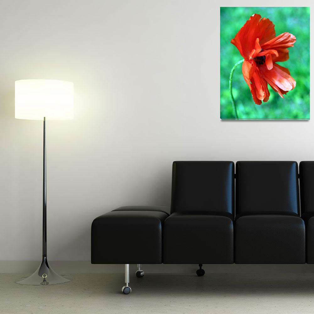 """""""red flower""""  (2011) by MyTreasuredImages"""