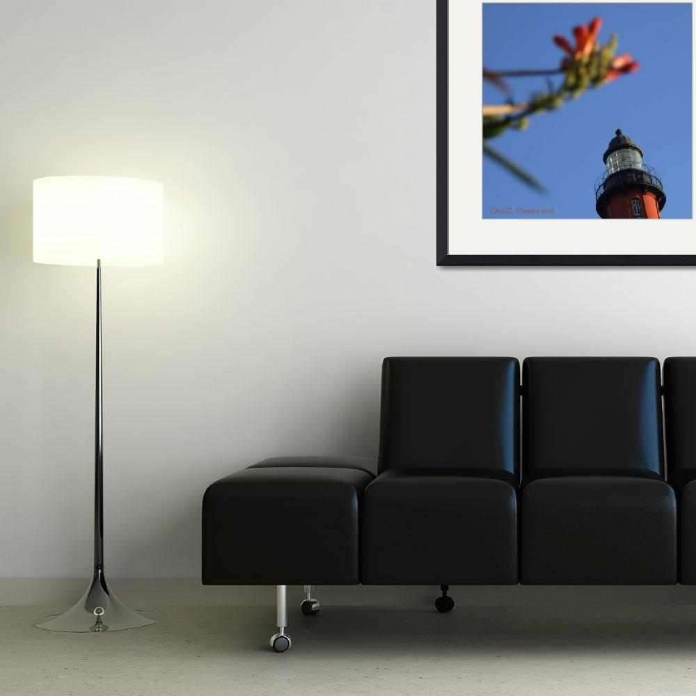 """""""Top Of the Lighthouse With Flowers&quot  (2009) by ChrisCrowley"""