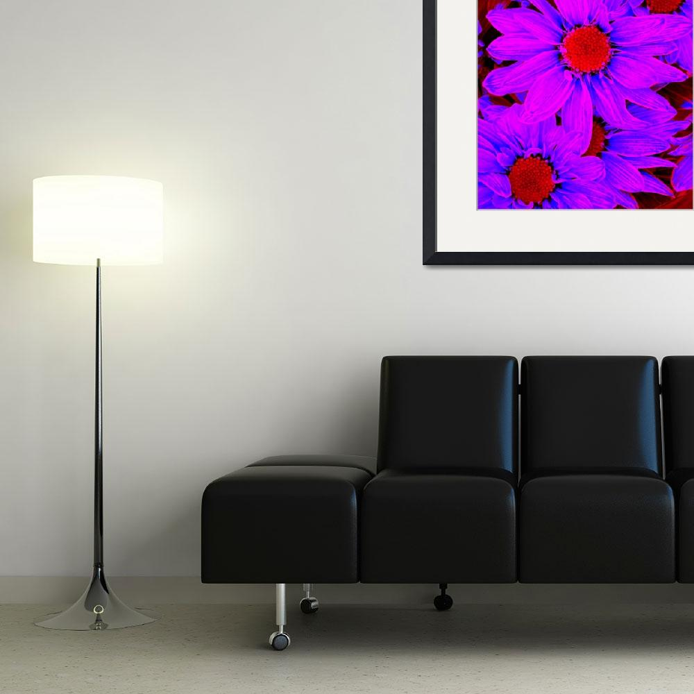 """""""Pop Daisies 12&quot  (2012) by AmyVangsgard"""