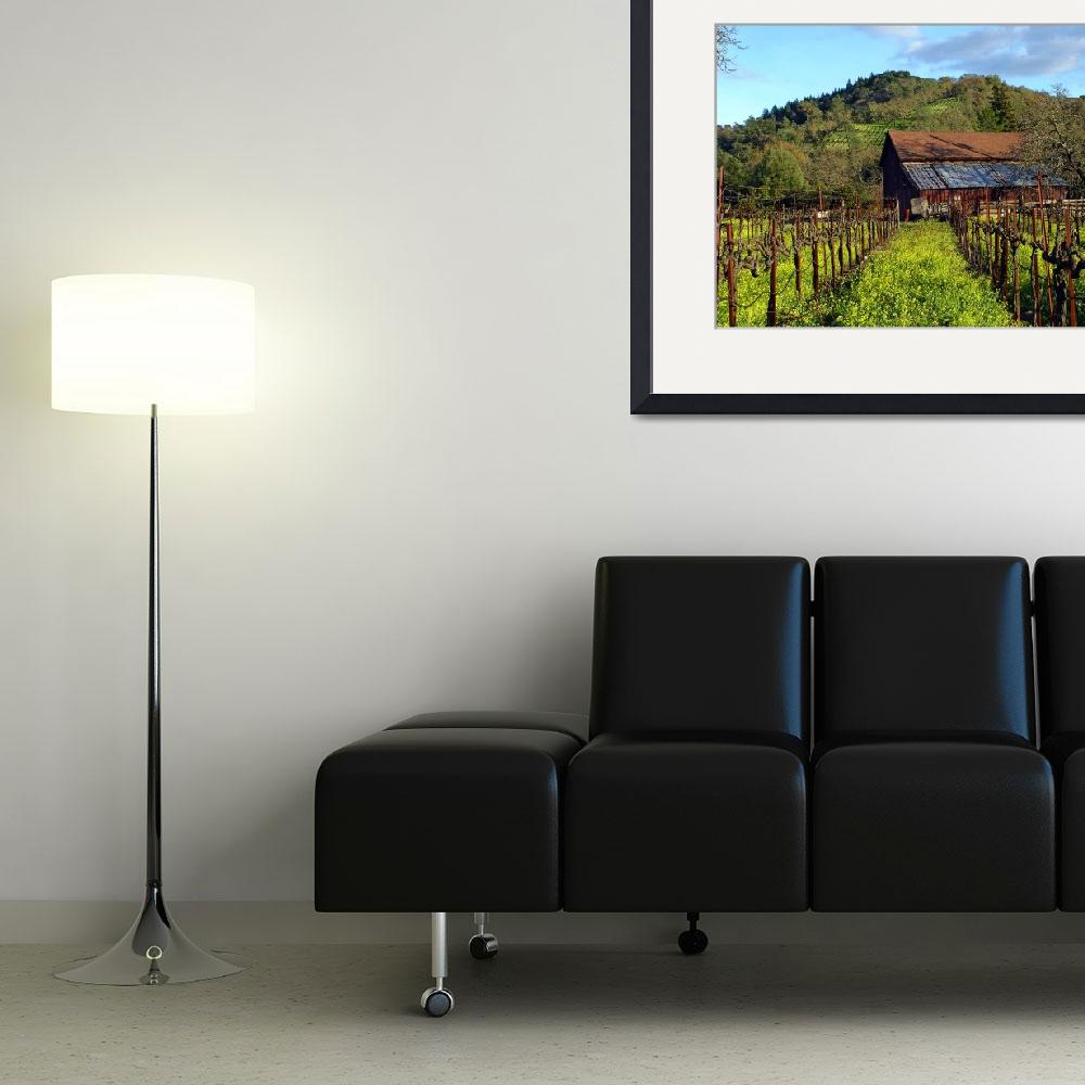 """""""Wine Country Barn&quot  (2008) by Bracco"""