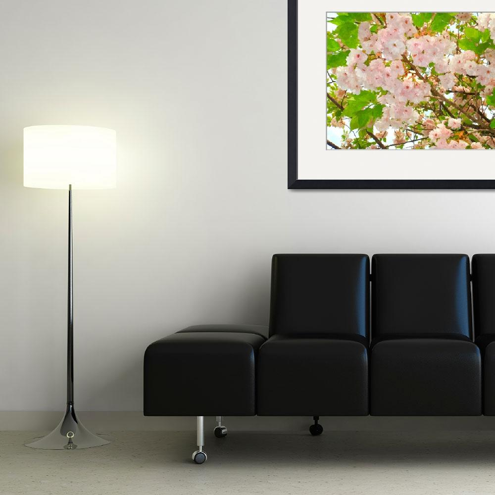 """""""Blooming cherry blossom 1&quot  (2013) by lanjee"""