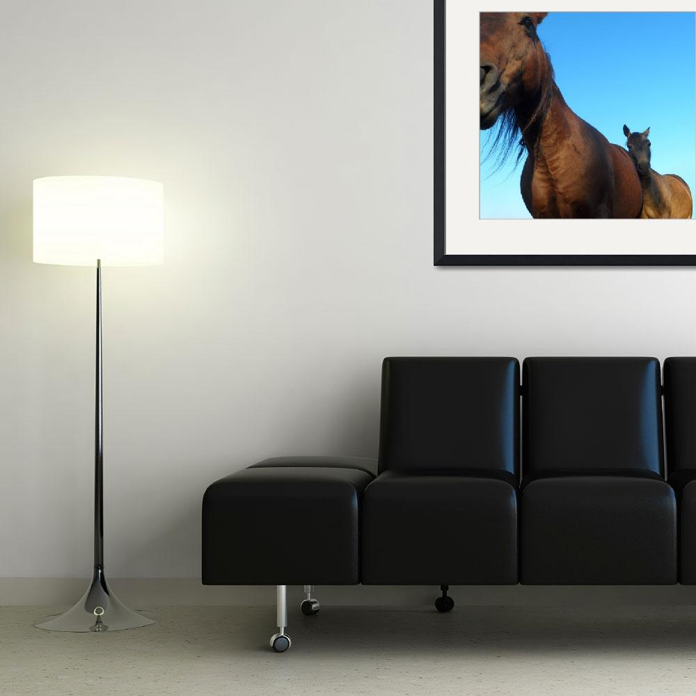 """""""Broodmares Naturally&quot  (2012) by equineimagery"""