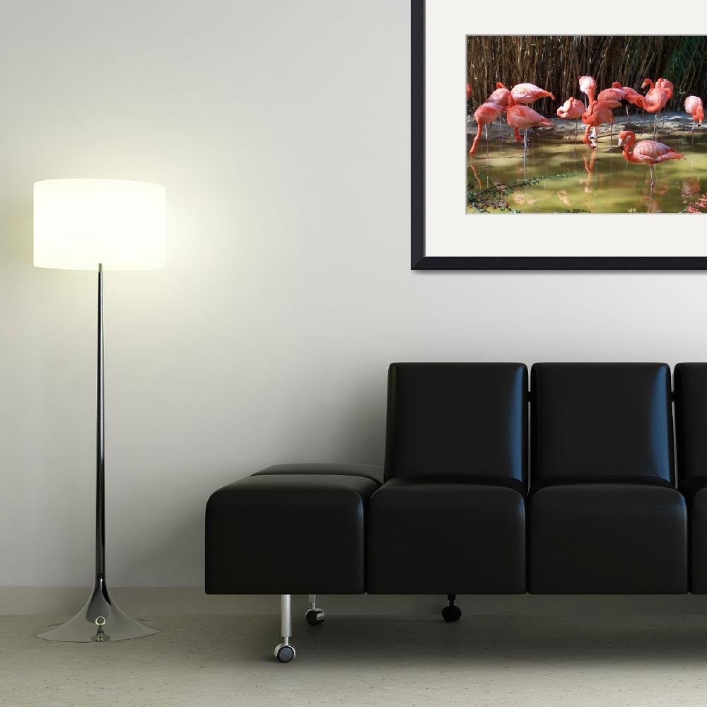 """""""FLAMINGOS&quot  by claudemarshall"""