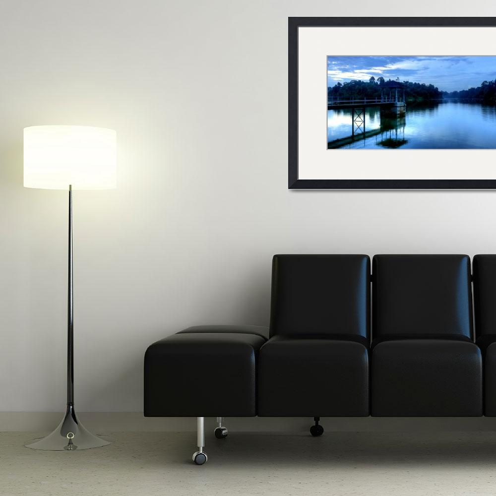 """""""Evening Water Macritchie&quot  (2010) by sghomedeco"""
