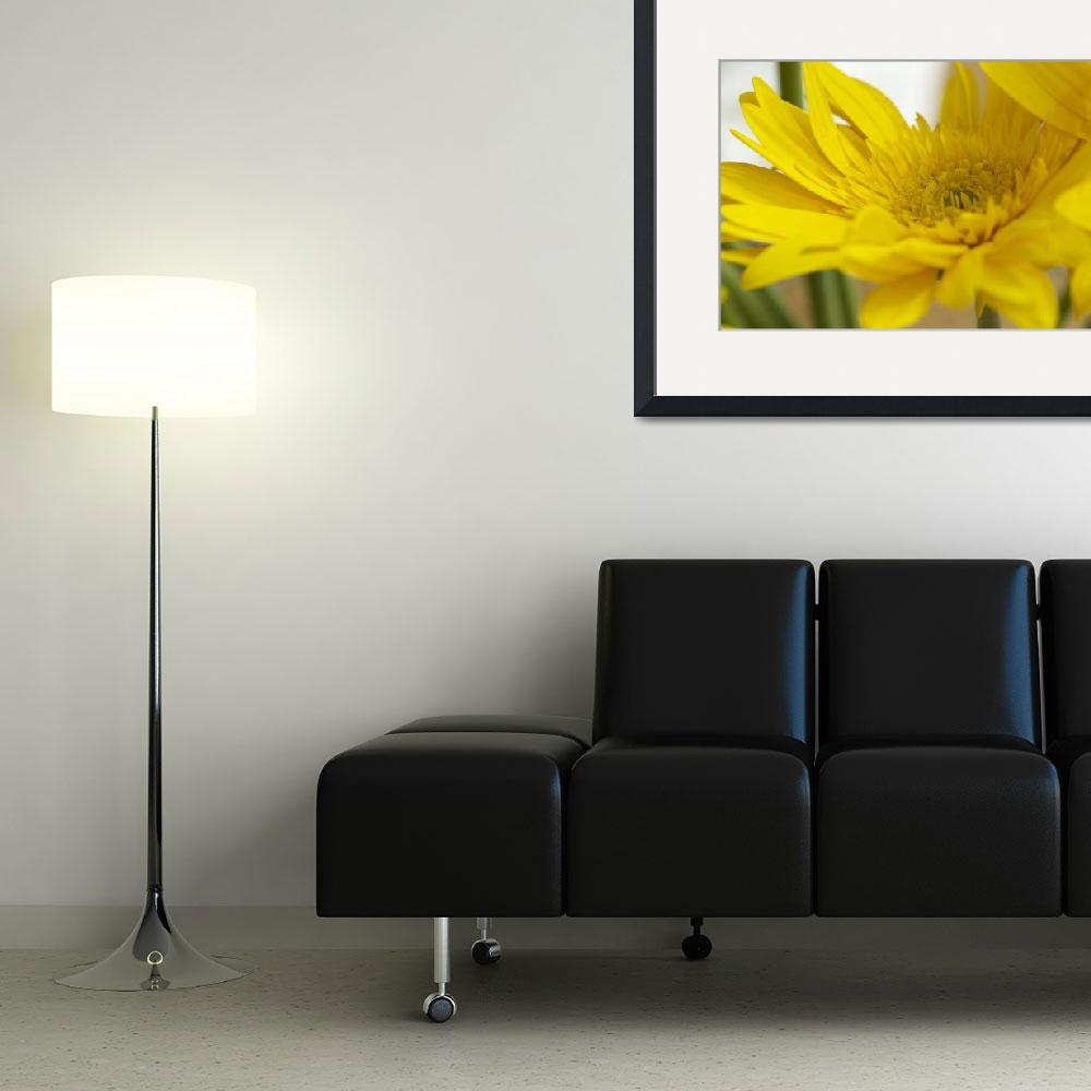 """""""Yellow Flower&quot  (2014) by joelrichter"""