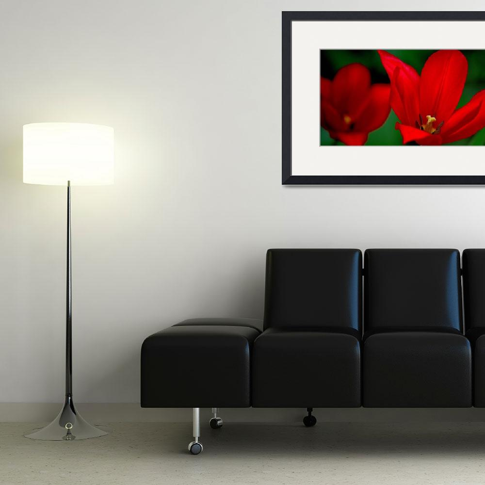 """""""Burgundy Tulips&quot  (2014) by joanhan"""