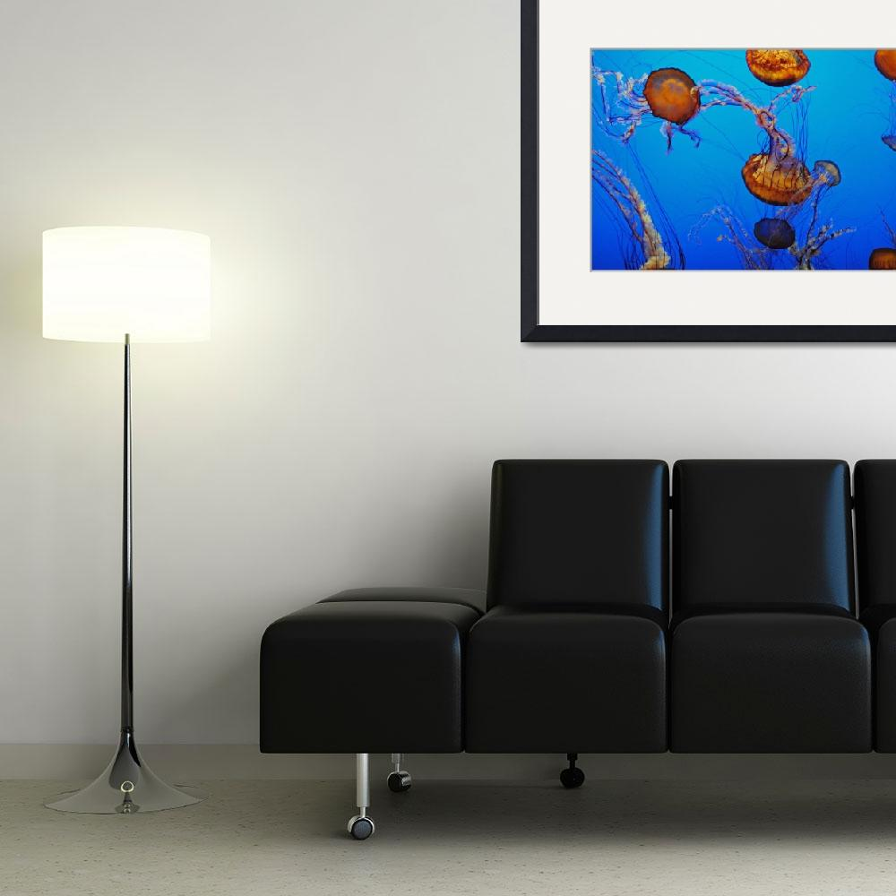 """""""Jellyfish Flying 1&quot  (2010) by TheHiddenStudio"""