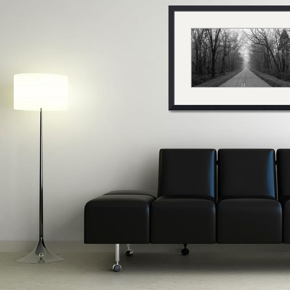 """""""Foggy Tree Lined Road IL&quot  by Panoramic_Images"""
