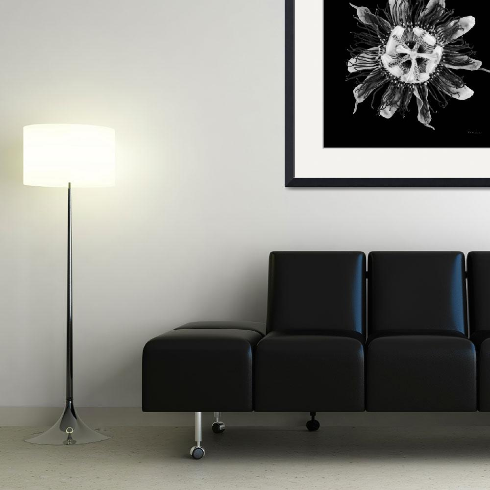 """Expressive Passion Flower in Black 50674K&quot  (2018) by Ricardos"