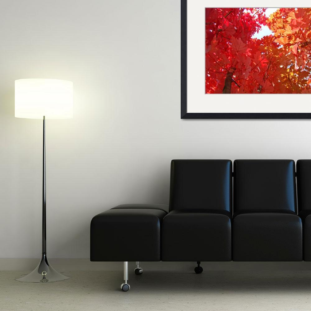 """""""FALL TREES Autumn Art Red Orange Leaves Landscape&quot  (2009) by BasleeTroutman"""