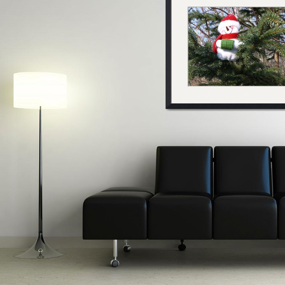 """""""Snowman waiting for Christmas 3&quot  (2008) by Albertphoto"""