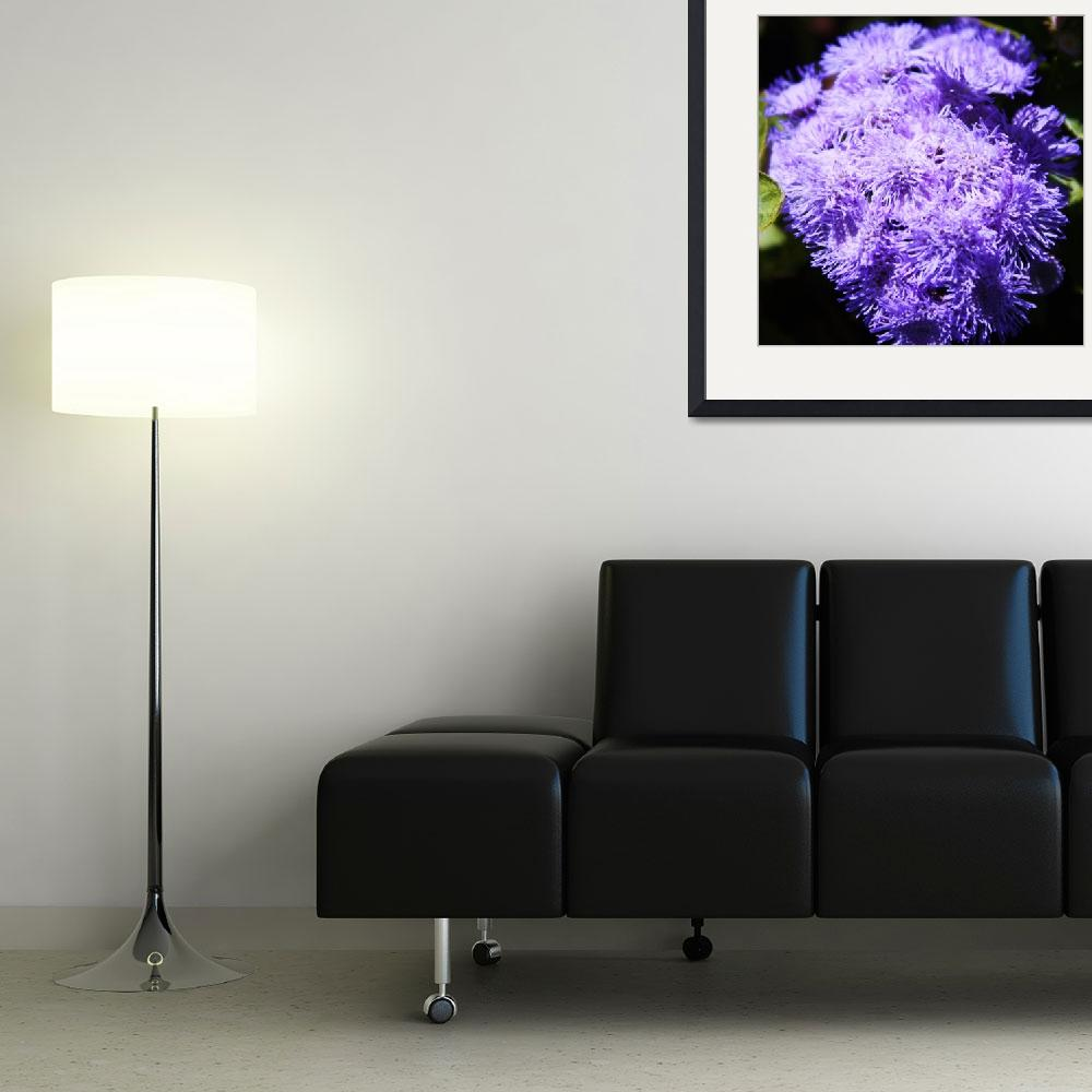 """""""Splash of Purple Flowers&quot  (2009) by ART4YOUR2EYES"""