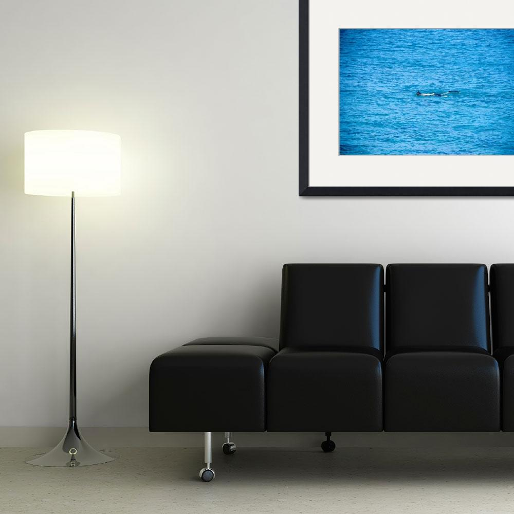 """""""Floating Blue&quot  (2005) by davesammon"""