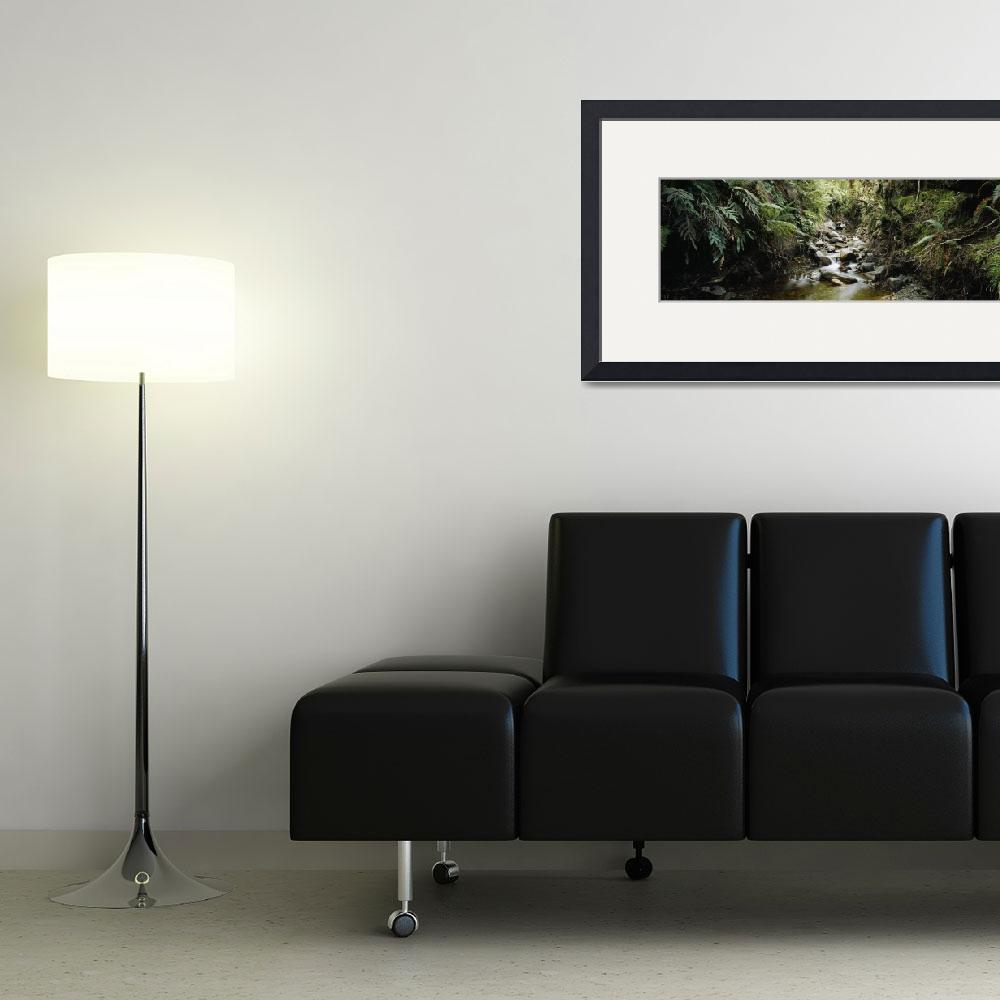 """""""Stream flowing in a forest&quot  by Panoramic_Images"""
