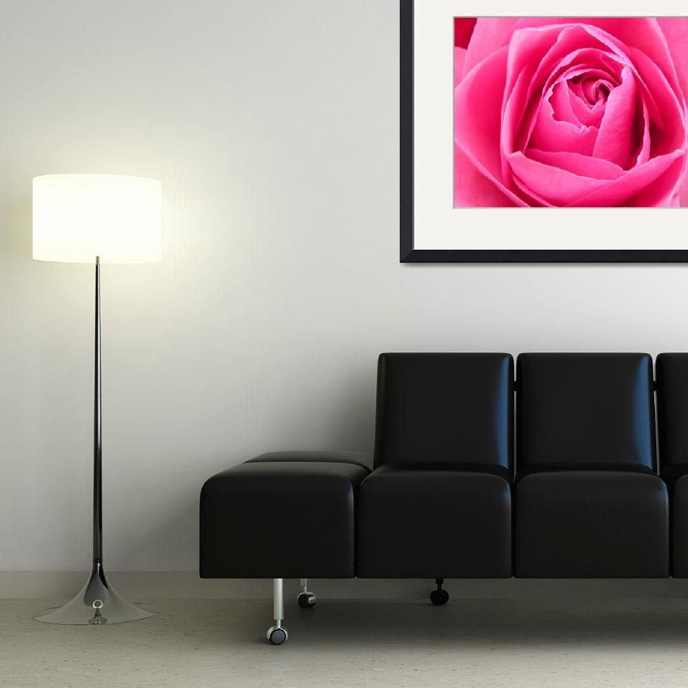 """""""ROSAS&quot  (2009) by I3RIAN"""