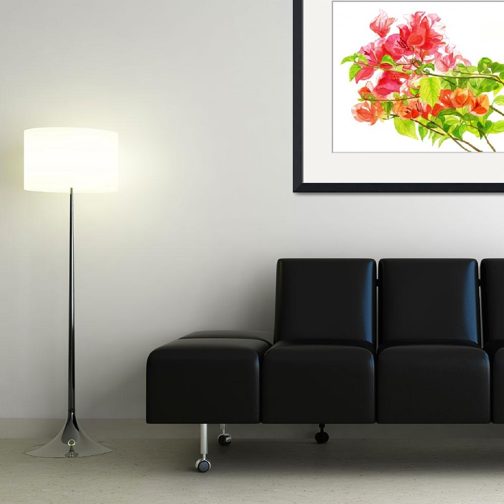 """Branch of Bougainvillea white background&quot  (2012) by Pacific-NW-Watercolors"