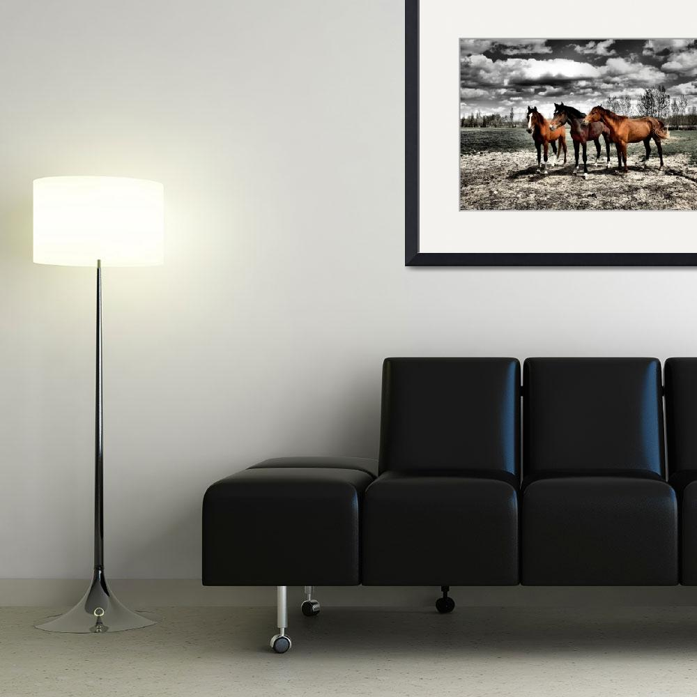 """""""Red Horses&quot  (2009) by RobbieBrowne"""