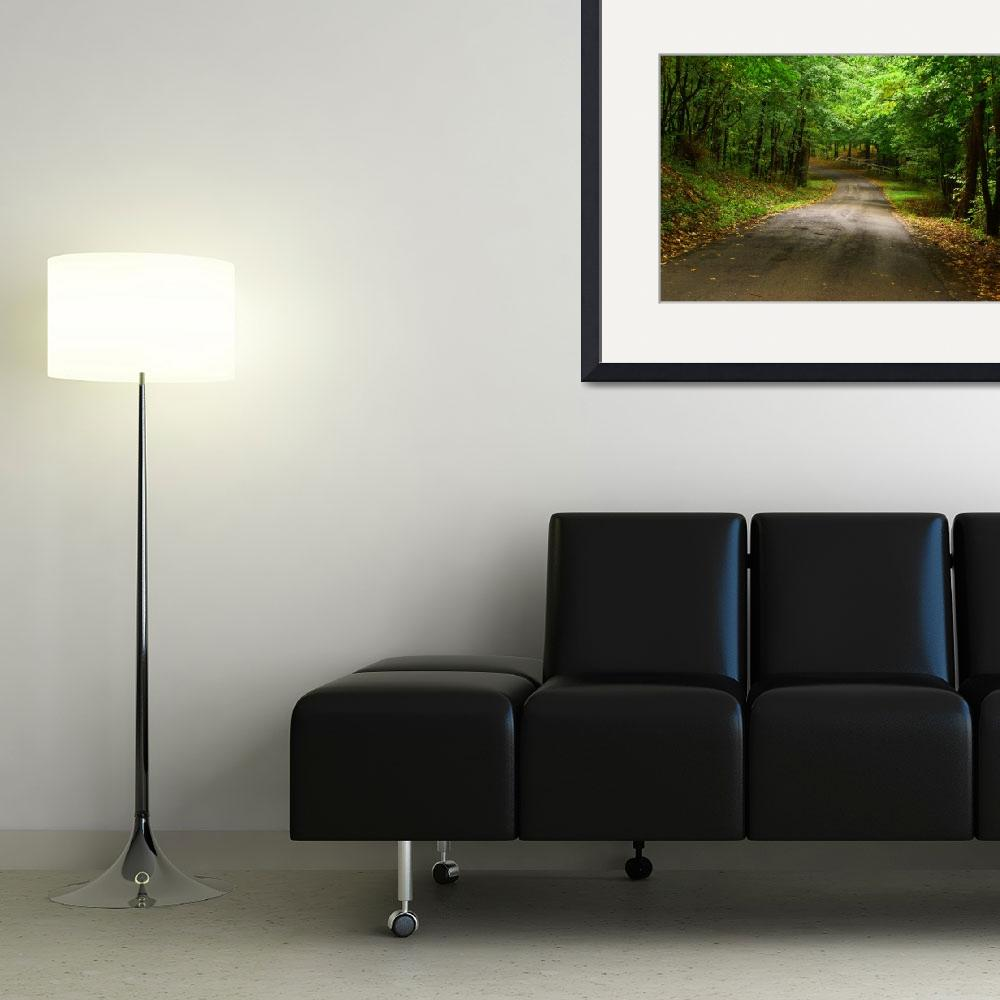 """""""Fall Road&quot  (2007) by slygoatherd"""