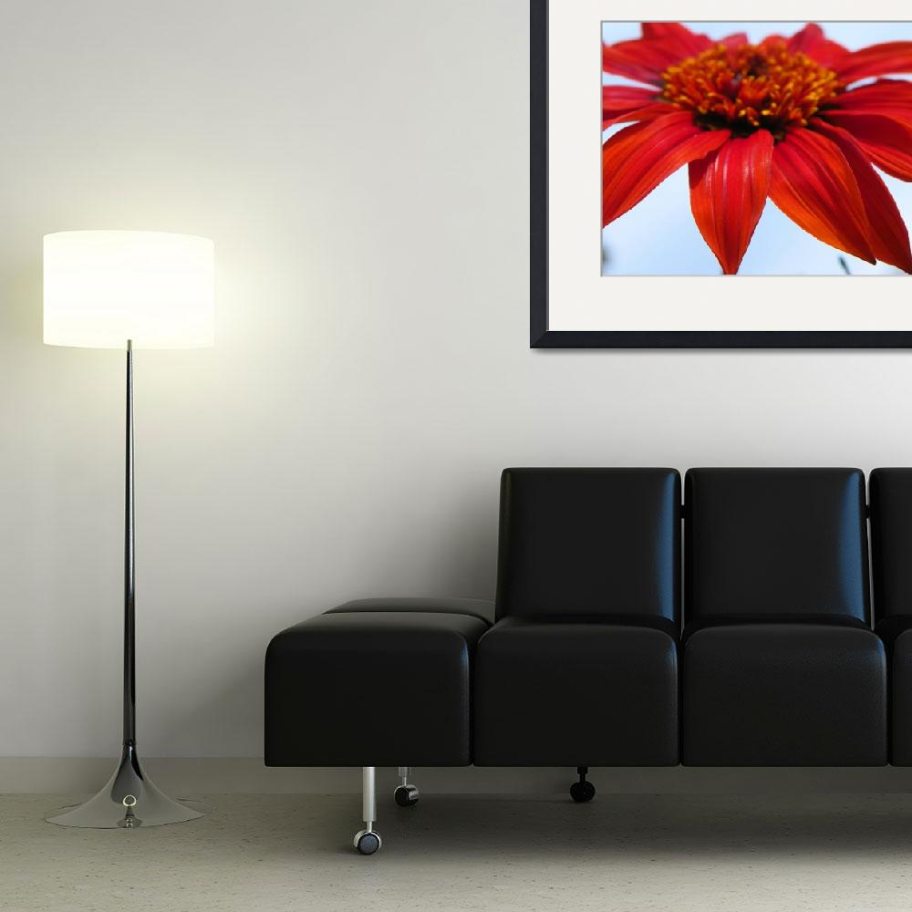 """""""SunBaters Sunset Hot Red Summer Floral&quot  (2013) by vpicks"""