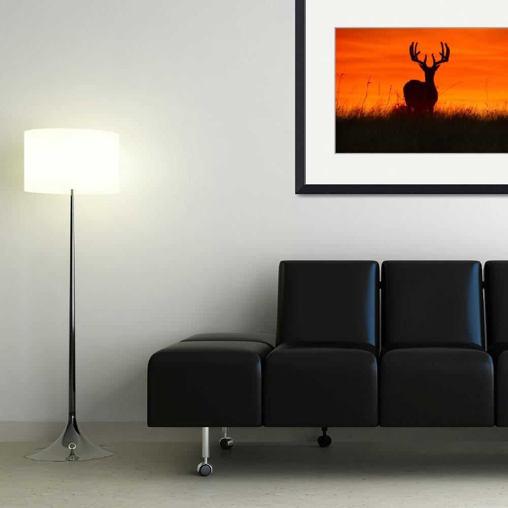 """Buck Silhouette at Sunset - landscape&quot  by PhotographicsUnlimited"