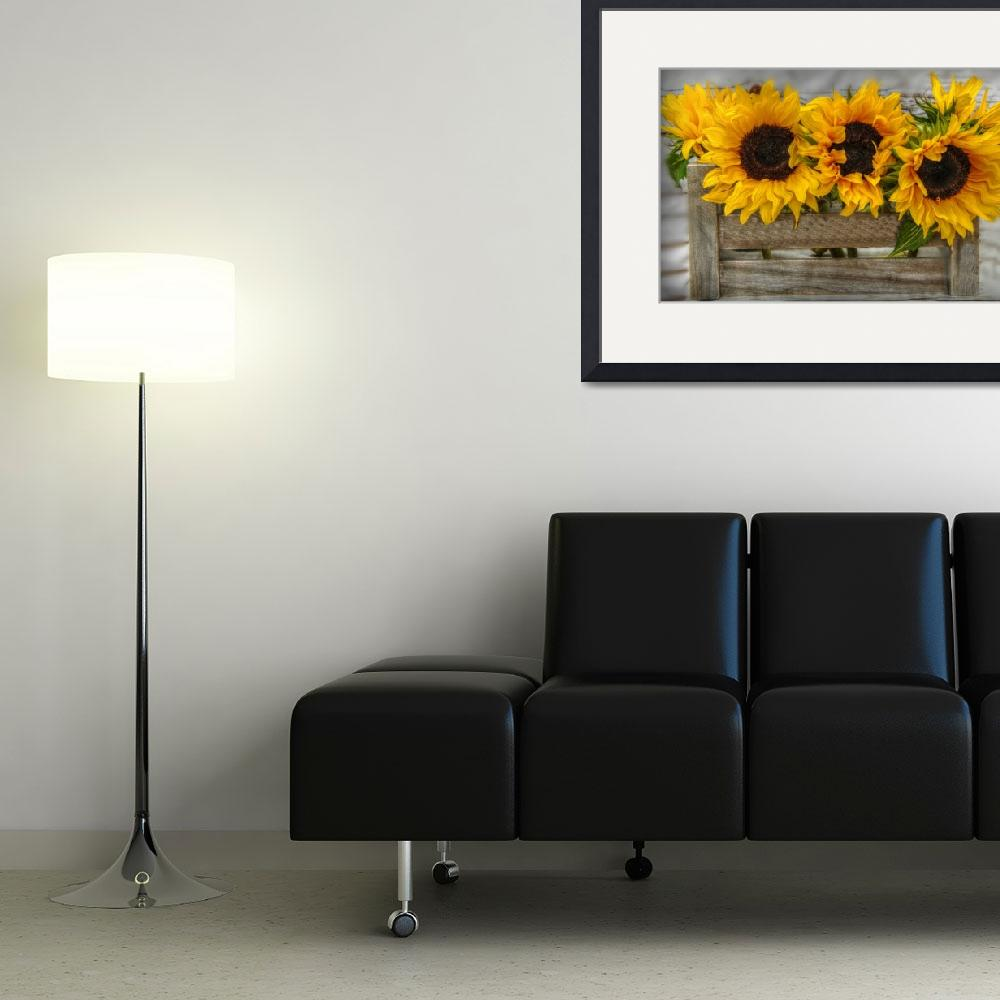 """""""sunflowers""""  (2015) by suzydoodle"""