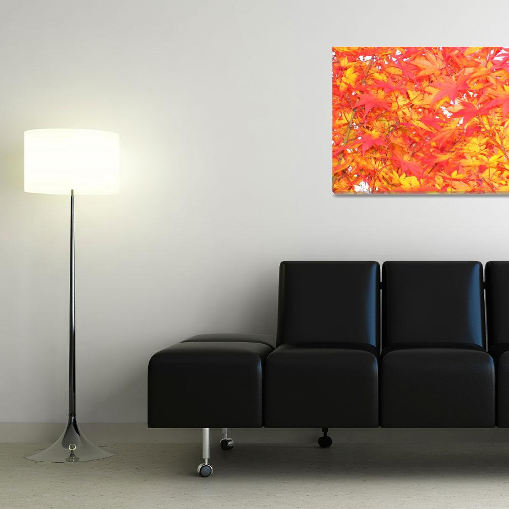 """""""fall leaves 2&quot  (2008) by lynndal"""