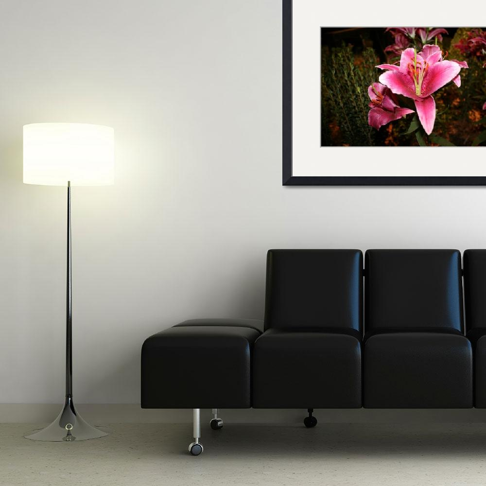"""""""Lily""""  (2011) by amyrims"""