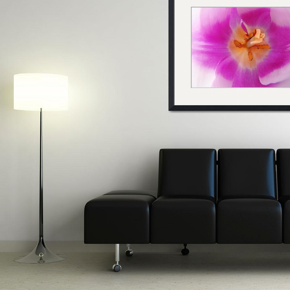 """""""Tulip Flower Floral Lavender Tulips Baslee&quot  (2010) by BasleeTroutman"""