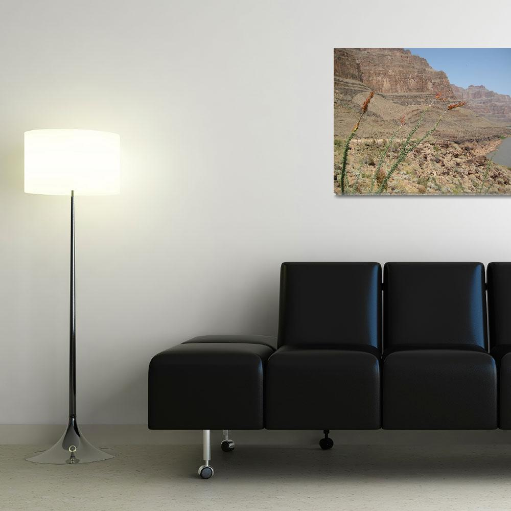 """""""Grand Canyon Floor&quot  (2007) by whitewalls"""